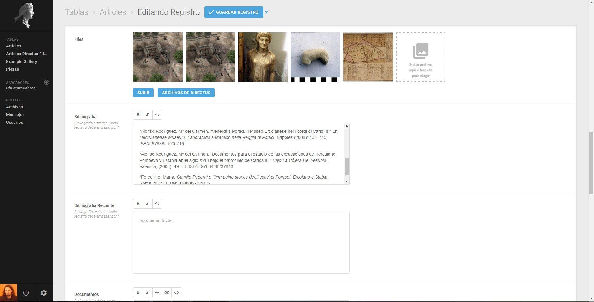 Imagen de la edición de una sección desde Directus